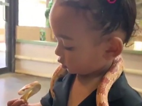 Kim Kardashian divides fans as she shares clip of Chicago playing with snake: 'It's not a toy'