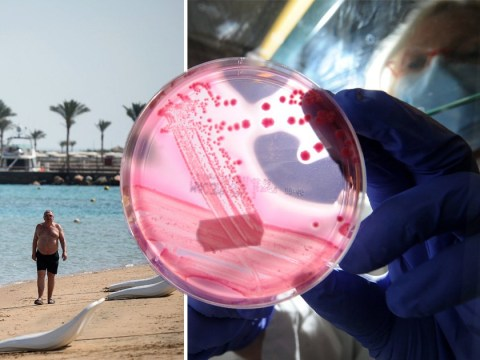 Brits warned of E.coli outbreak in Egyptian resort one year after couple's death