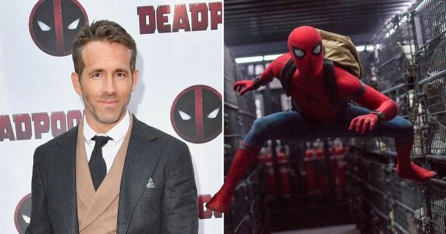 Ryan Reynolds and Spider-Man