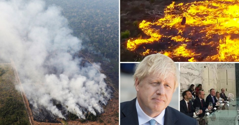 Latest dodgy Brexit trade deal will be with Brazil, putting rainforests at risk
