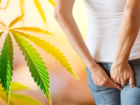 New mum says CBD 'saved her butt' and cured her of piles