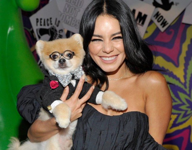 Vanessa Hudgens poses with a pomeranian at Museum Of Weed launch