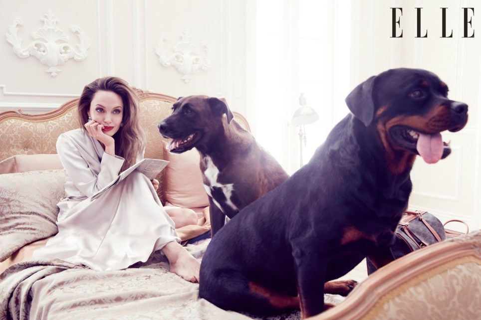 Angelina Jolie says the world needs more 'wicked women' embargoed for 1pm (GMT) today Monday, 5th August. TERMS OF USAGE: Run the front cover with the images at all times Run a maximum of two images, plus the front cover State that ?The September issue of ELLE UK is on sale from Thursday 8 August 2019.?. Credit the pictures as courtesy of?ELLE UK/ Alexi Lubomirski For online usage, include a link to the?UK?site:?www.ELLE.com/uk For online usage, use only watermarked images with cover Ensure the images are not altered or cropped Warrant there will be no derogatory, defamatory or negative reference made to?ELLE?or anyone featured in the pictures