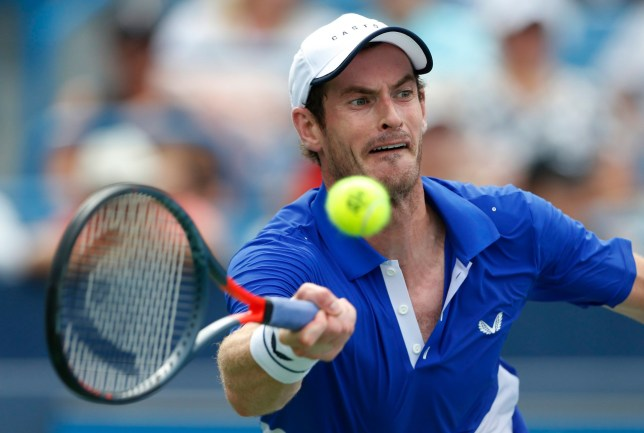 Andy Murray lost in his singles comeback at the Cincinnati Masters