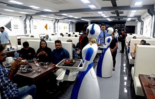 Restoran India Mulai Pekerjakan Robot Pelayan