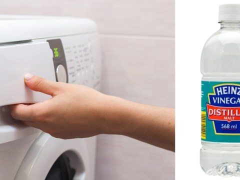 People are obsessed with this 40p vinegar hack to make your washing soft and smell amazing