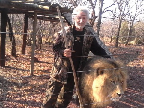 Lions shot dead after mauling owner to death