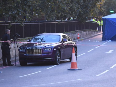 Man killed after being hit by purple Rolls Royce near Buckingham Palace