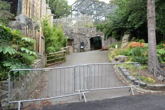 EDINBURGH Zoo hill