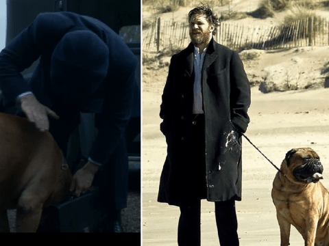 Peaky Blinders season 5 reveals Tommy Shelby kept Alfie Solomons' dog and viewers can't handle it