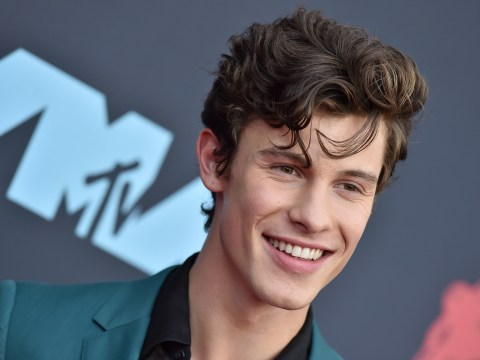 Shawn Mendes unimpressed with 'super weird' mini-me doll