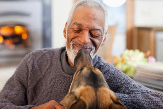 Dog licking older man