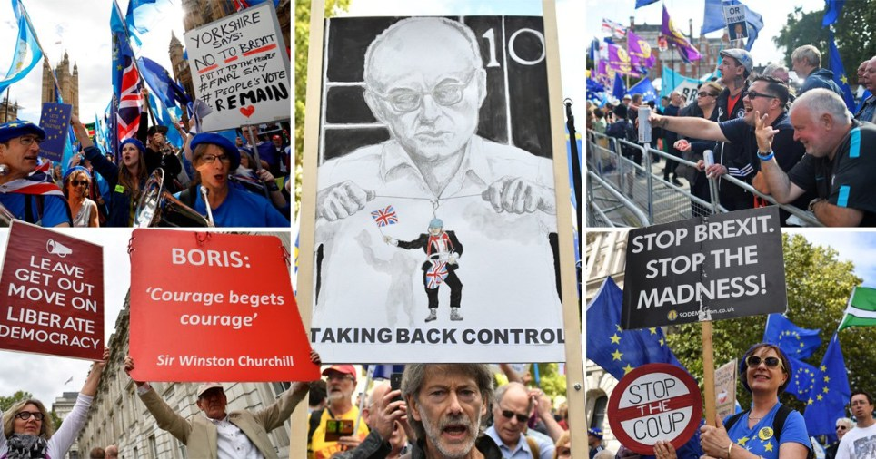 Brexit protest in Westminster today