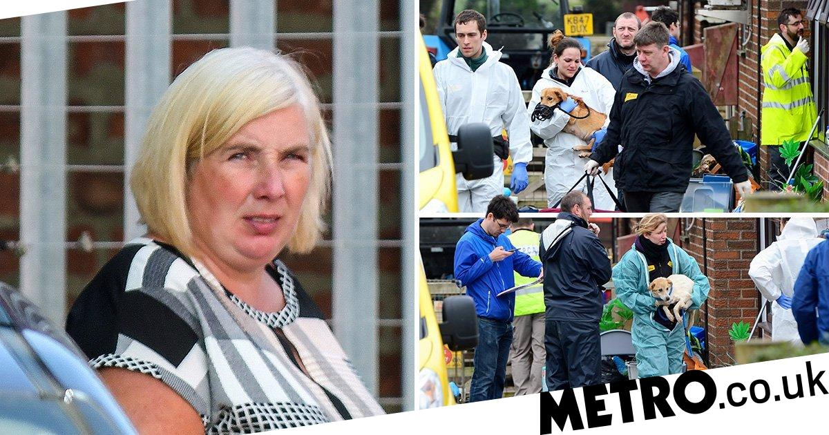 Couple spared jail for risking return of rabies in puppy-smuggling scandal