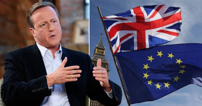 David Cameron next to picture of Union Jack and EU flag