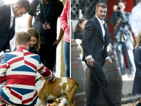 David Beckham cuddles up to adorable bulldog with daughter Harper as he films hotel commercial