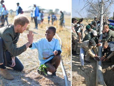 Prince Harry warns 'we are losing' war against climate change
