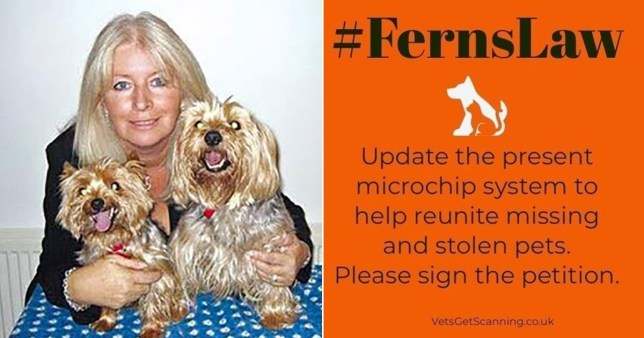 Debbie Matthews and her Yorkshire Terriers Widget and Gizmo and poster for Ferns Law