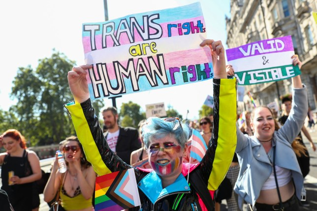 Protestors hold up placards during the first ever Trans Pride March in London, Britain September 14, 2019. REUTERS/Simon Dawson