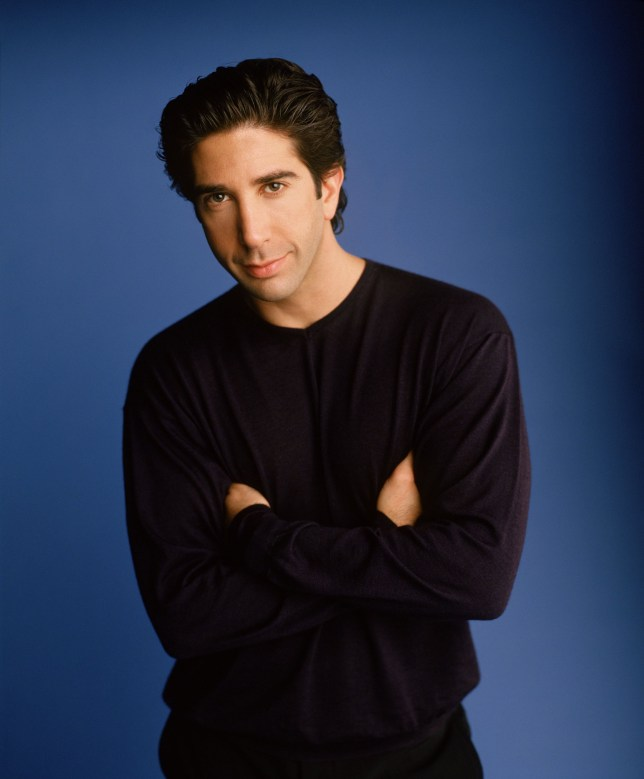 "385848 05: Actor David Schwimmer stars as Ross Geller in NBC's comedy series ""Friends."" (Photo by Warner Bros. Television)"