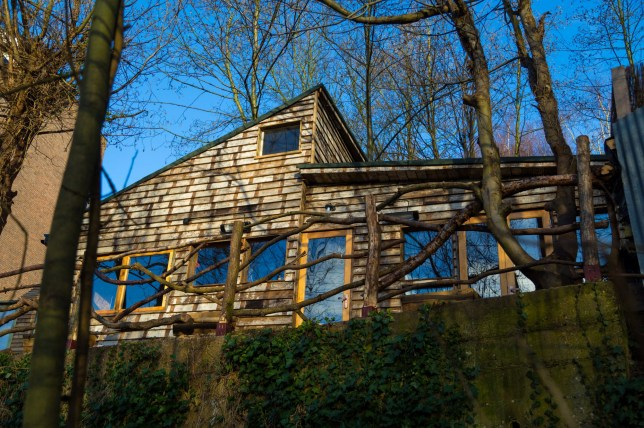 Woman ordered to tear down shack she built overlooking Hampstead Heath