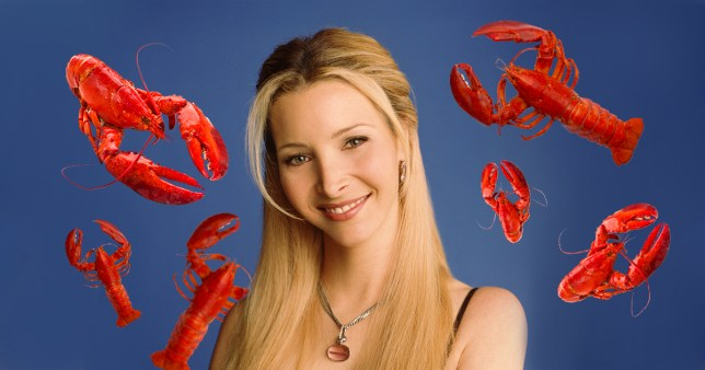 Phoebe Buffay's lobster theory in Friends is another one of her wild lies and we've never felt so betrayed