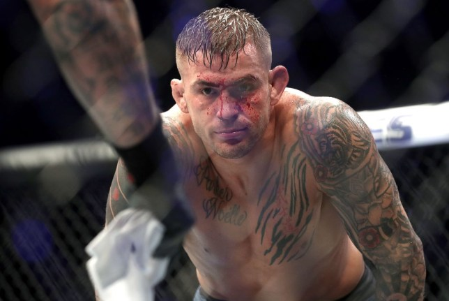 ABU DHABI, UNITED ARAB EMIRATES SEPTEMBER 7, 2019: Interim UFC lightweight champion Dustin Poirier in a title unification bout against UFC lightweight champion Khabib Nurmagomedov at the UFC 242 mixed martial arts tournament. Valery Sharifulin/TASS (Photo by Valery SharifulinTASS via Getty Images)