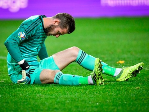 Spain boss provides David de Gea injury update ahead of Manchester United's clash with Liverpool