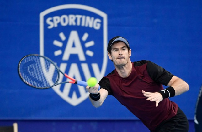 Andy Murray plays tennis at the European Open final tennis match in Antwerp