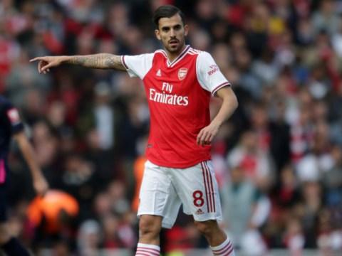 Arsenal star Dani Ceballos suffers injury scare on international duty