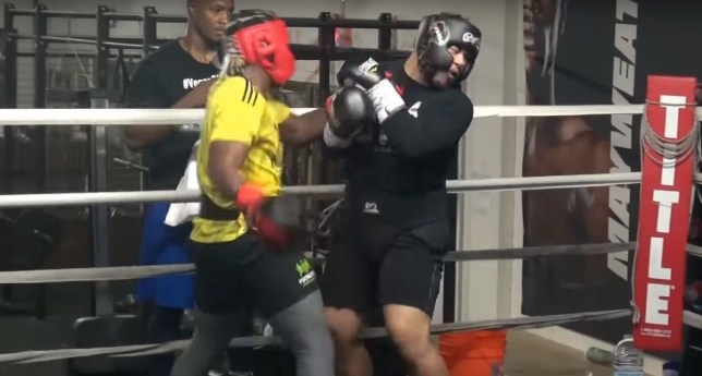 KSI knocked out his opponent with an impressive four-punch combo in sparring before his rematch against Logan Paul