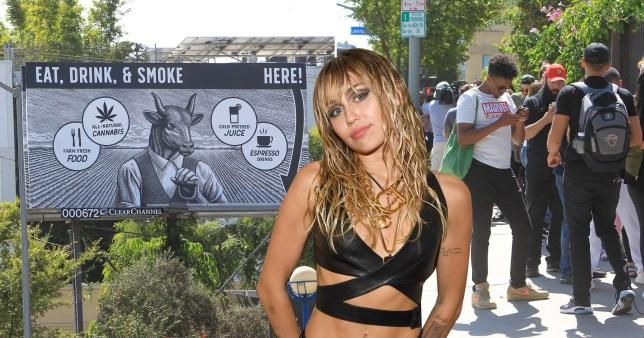 Miley Cyrus weed