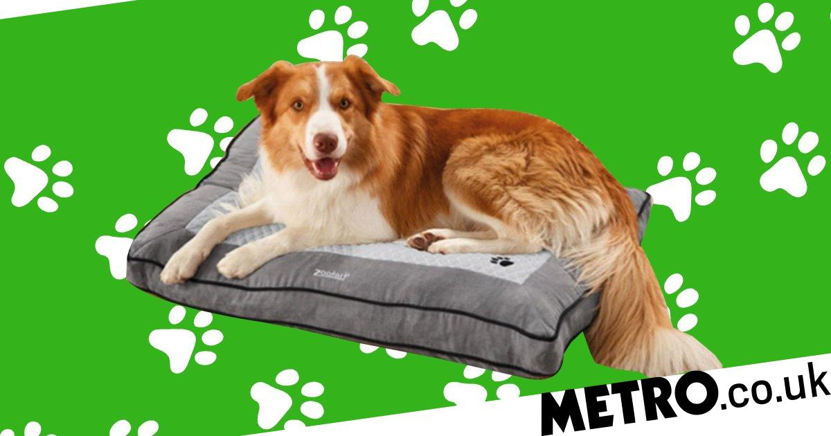 Lidl is selling a heated dog bed which keeps pets warm in winter