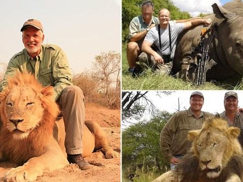 Trophy hunting tours offer 'two for one' deals to go and kill lions