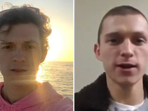 Spider-Man's Tom Holland shaves off his luscious curls and fans have a lot of feelings
