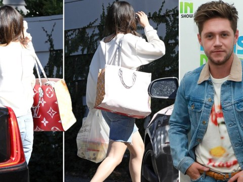 Selena Gomez spotted running into the home of Niall Horan in Los Angeles and we have questions
