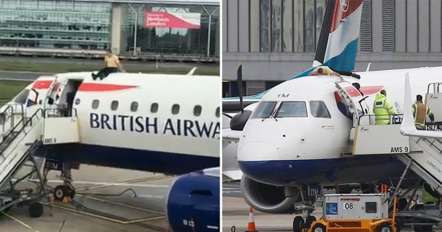 XR protester James Brown climbed on top of a BA plane at London City Airport (Picture: SWNS/XR)