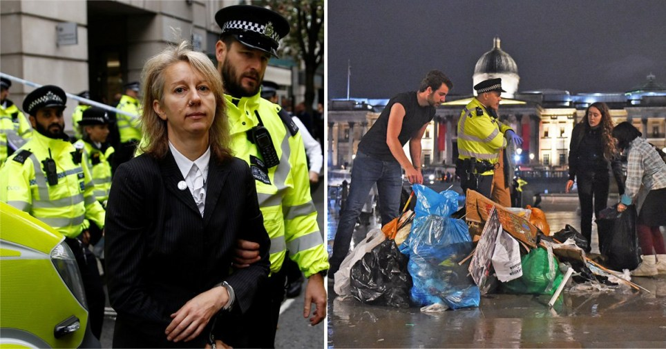 XR co-founder Gail Bradbrook was arrested after trying to smash windows at the transport ministry as other protesters were told to leave their London camps or face arrest (Picture: PA)