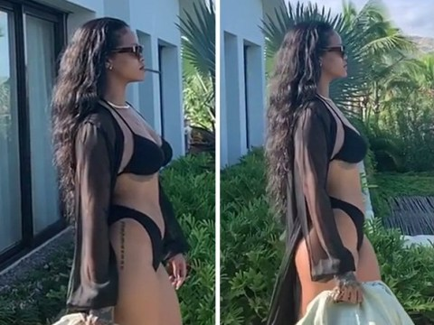 Rihanna perfectly rubbishes those pregnancy rumours by strutting in a bikini and smoking a blunt