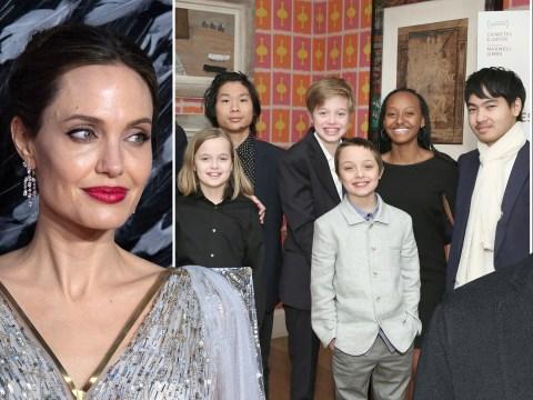 Angelina Jolie and Brad Pitt's children shunning Hollywood for 'humanitarian affairs'