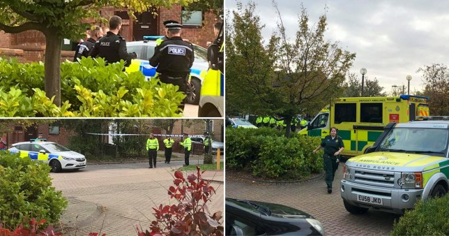 Armed police surround Milton Keynes house following firearms reports
