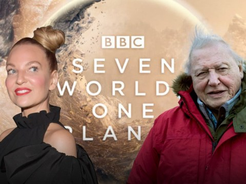 Seven Worlds One Planet: How Sia joined forces with Sir David Attenborough and Hans Zimmer to create epic track