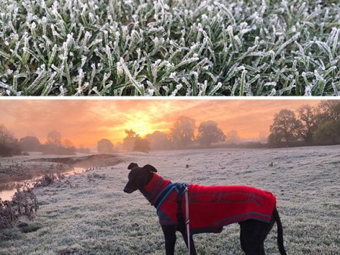 Temperatures about to plunge with -4C temperatures and fog set for Halloween