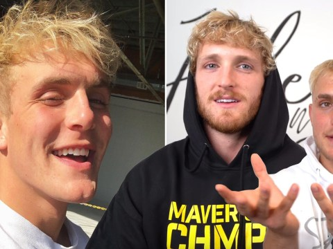 Logan and Jake Paul want babies next year and the world isn't ready