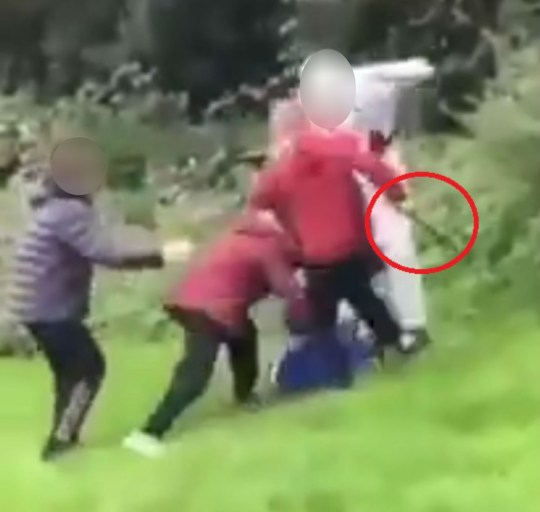 One of the boys holding an unknown object SHOCKING video has emerged of a gang of children wielding a BB gun and a hammer whilst assaulting a young boy in a park. The horrific footage shows one 12 year-old child being stamped on by the group who can be seen carrying various weapons. They repeatedly kick the boy who is lying on the ground desperately trying to protect himself. Police have arrested four individuals in connection with the assault which took place on Saturday. The incident occurred in the area of Beaumont Walk in Leicester, and was posted to Twitter yesterday by the page ?London Knife Crime Ldn? saying: ?A group of young kids attack a young kid happen in a park in Leicester.?