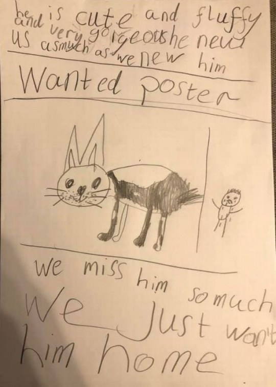 Camron's heart wrenching 'wanted' poster after his dog Ralph was stolen