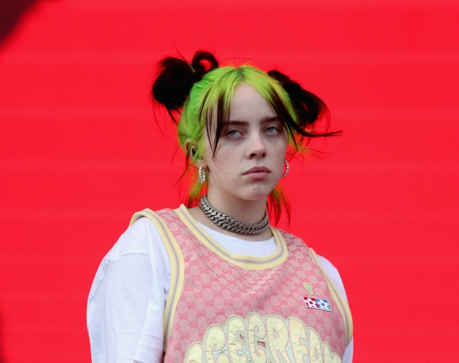 Billie Eilish has ring stolen by fan from her finger during set and she's not even mad