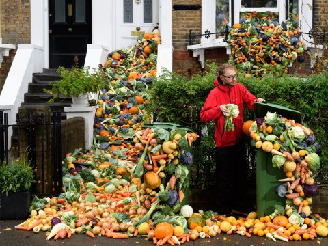 World Food Day: Easy ways to waste less food