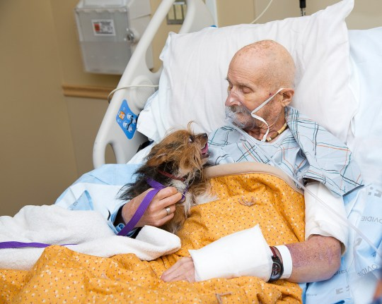 A Special Reunion Yesterday was a special day for a Veteran named John Vincent and his beloved dog Patch. Vincent was admitted this week to the Hospice Center at the Raymond G. Murphy Veterans Affairs Medical Center. He has no family in New Mexico so had to surrender his beloved dog, Patch to us. John Vincent may not have much time left said Amy Neal, a palliative care social worker and he had only one request. Vincent wanted to see his dog one last time. Yesterday we were able to make their final reunion happen. Our AWD Director, Danny Nevarez, along with team members Joel Craig, Desiree Cawley and Celina Chavez-Fennell took Patch down to the Hospice Center for the reunion. It was such a heart warming moment! They were so happy to see each other and to say their good byes. It was an honor to make this veterans final wish come true. Patch is now back at our Westside Animal Shelter awaiting his new home. Patch already has an interested adopter. #awdpets #makingawishcometrue #VeteransAffairsMedicalCenter