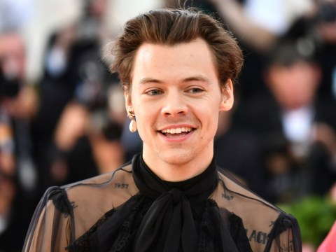 Harry Styles' age and net worth as he returns with new Lights Up song and video